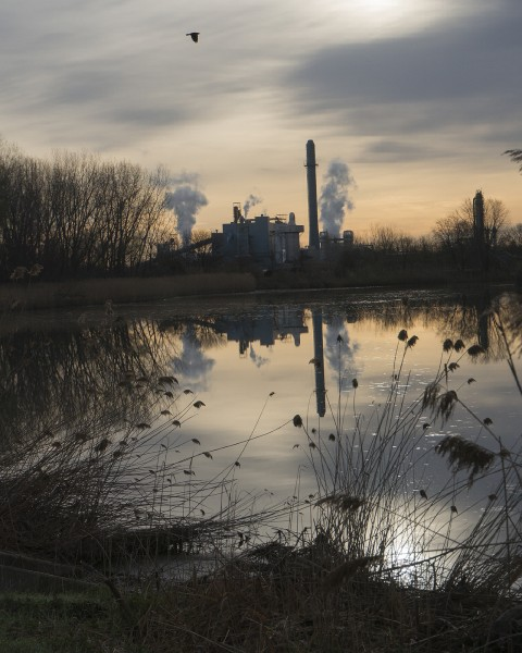 Pond behind the ethanol plant (headwaters of the Kankakee River)